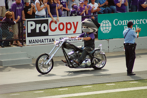 Motorcycle Willie