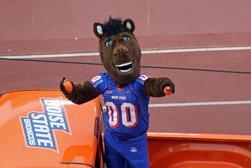 Buster Bronco